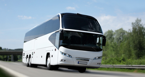 Limo Bus & Party Bus Rental in Kingston